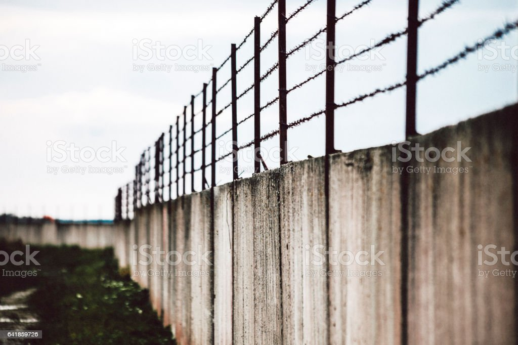 Barbed wire on wall. stock photo