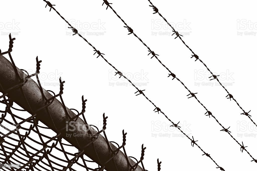 Barbed Wire stock photo