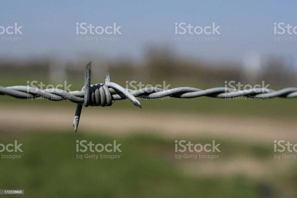 Barbed wire! stock photo