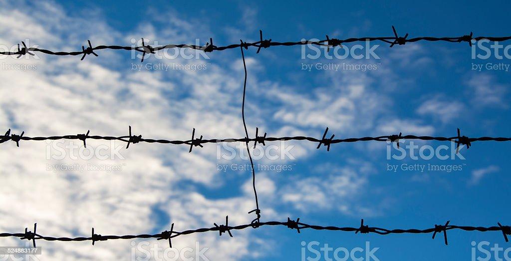 Alambre de espino foto de stock libre de derechos