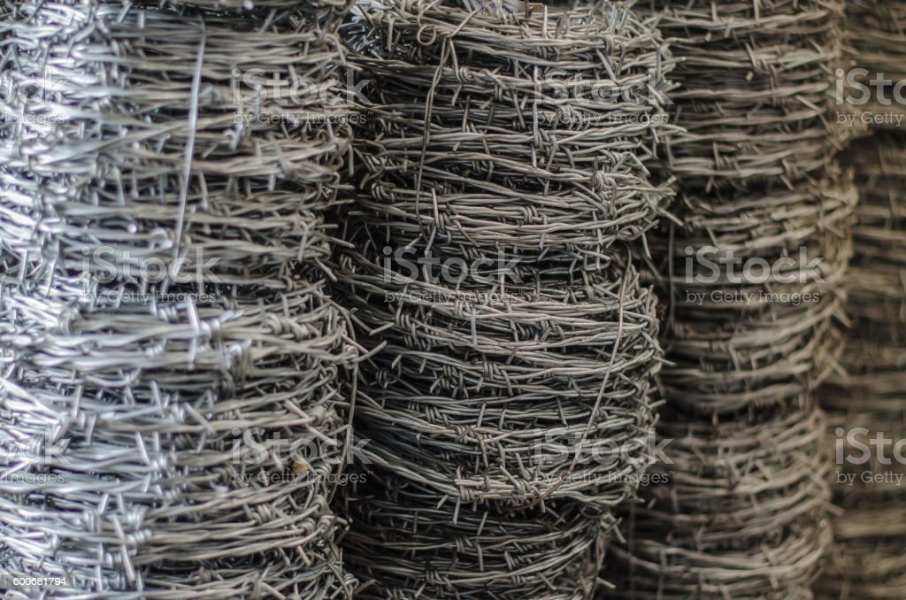 barbed wire roll  close up stock photo
