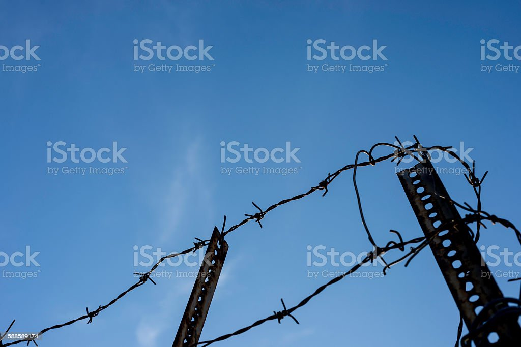 Barbed wire rusty fence stock photo