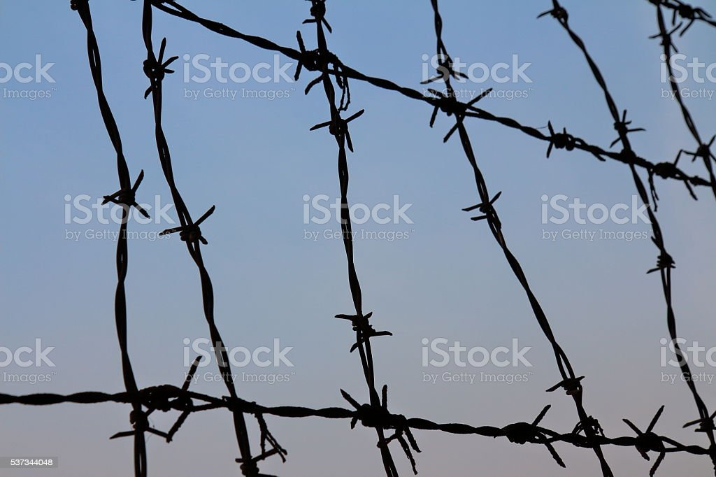 Barbed wire silhouette stock photo