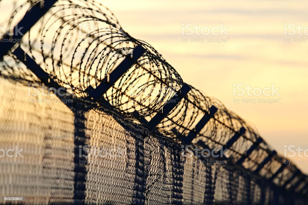 barbed wire steel wall against the immigrations in europe stock photo