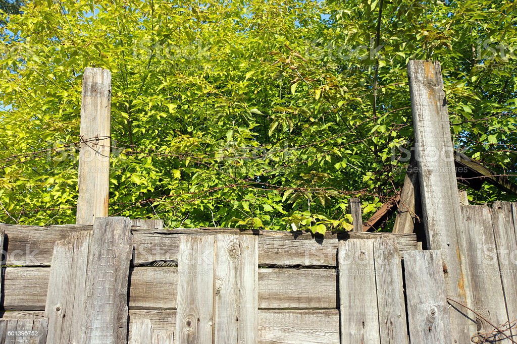Barbed wire sticking out of the wooden fence. In the stock photo