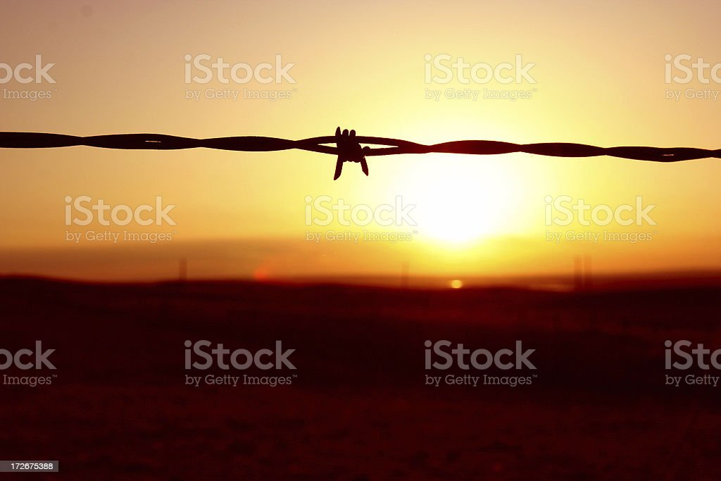 Barbed Wire Sundown royalty-free stock photo