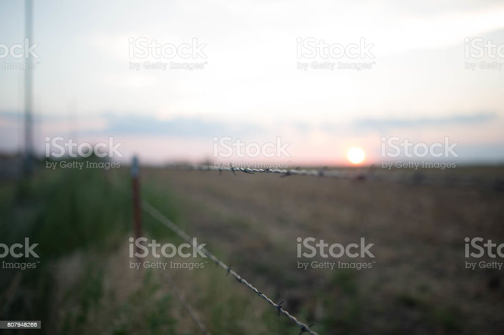 Barbed Wire Sunset stock photo