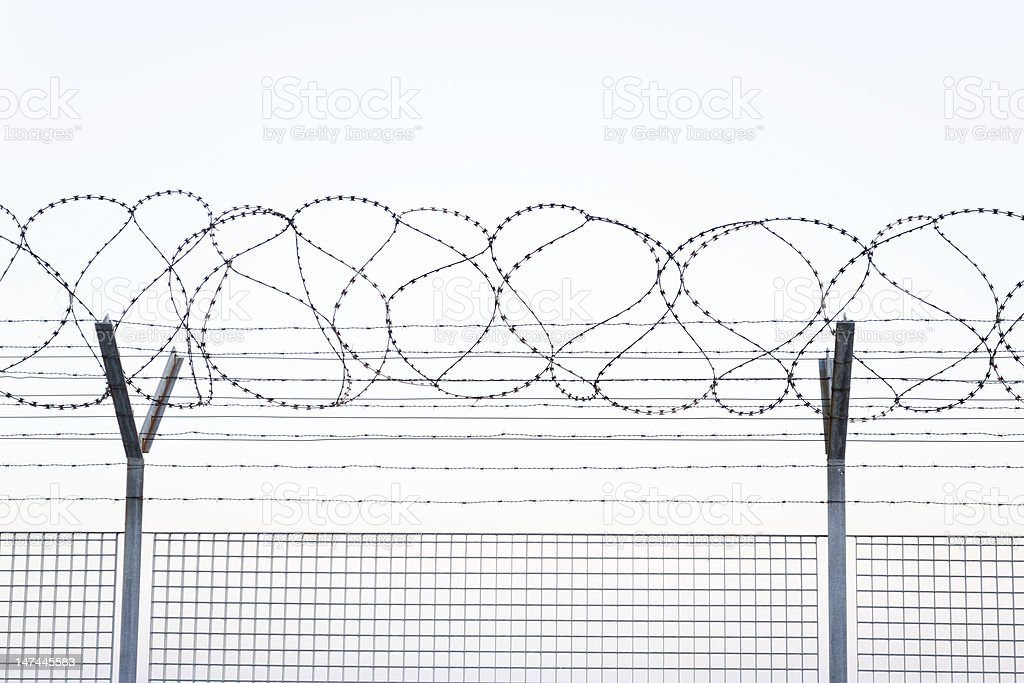 Barbed Wire, White Background stock photo