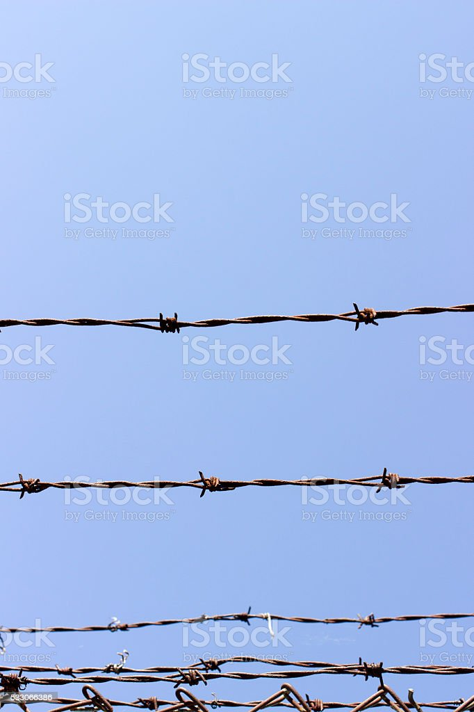 Barbed wire with blue sky stock photo