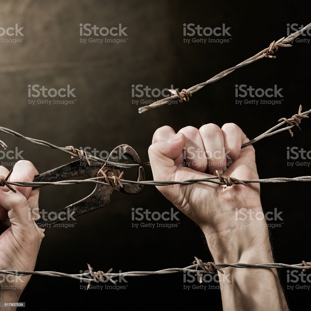 barbed wire with hands stock photo