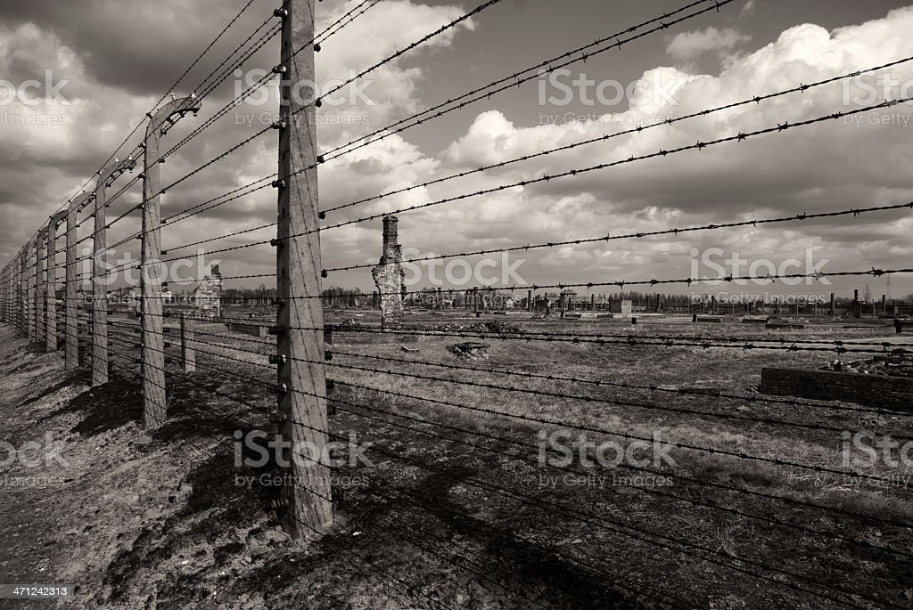 barbed wires in prison royalty-free stock photo