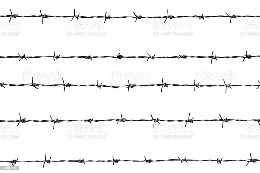 barbed wires stock photo