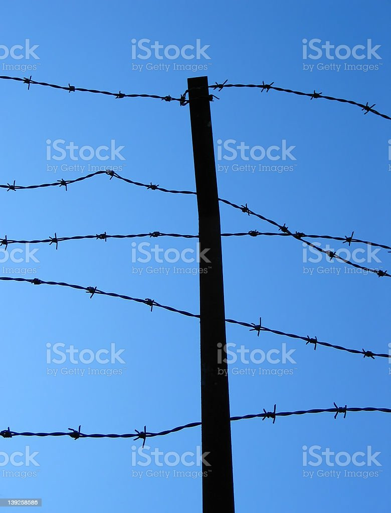 Barbed-Wire Fence stock photo