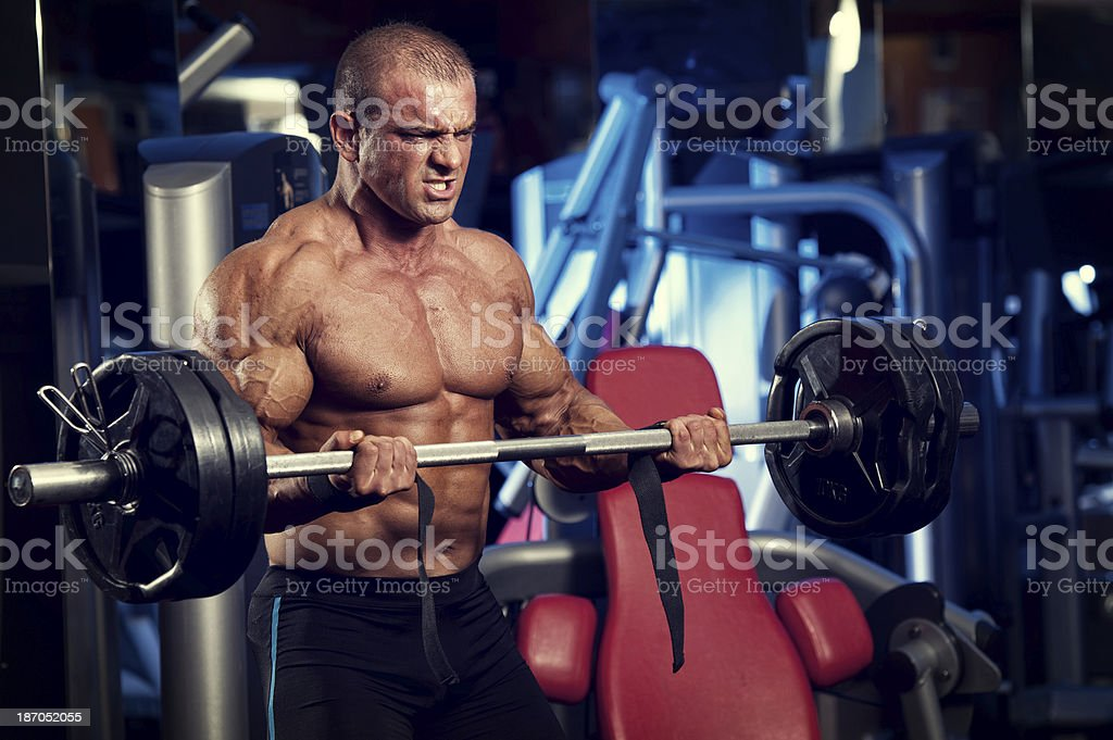 Barbell Bicep Curls royalty-free stock photo