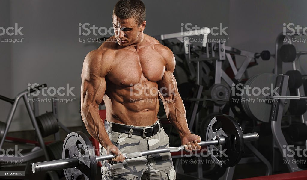 Barbell Curls royalty-free stock photo