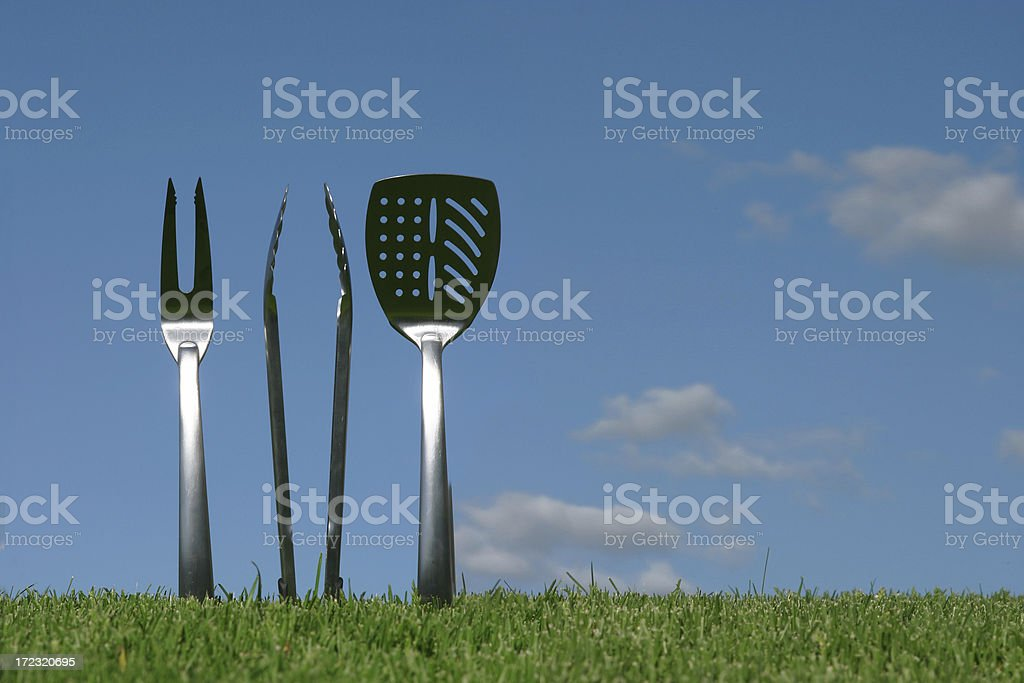 Barbeque Anyone? (with copyspace) royalty-free stock photo