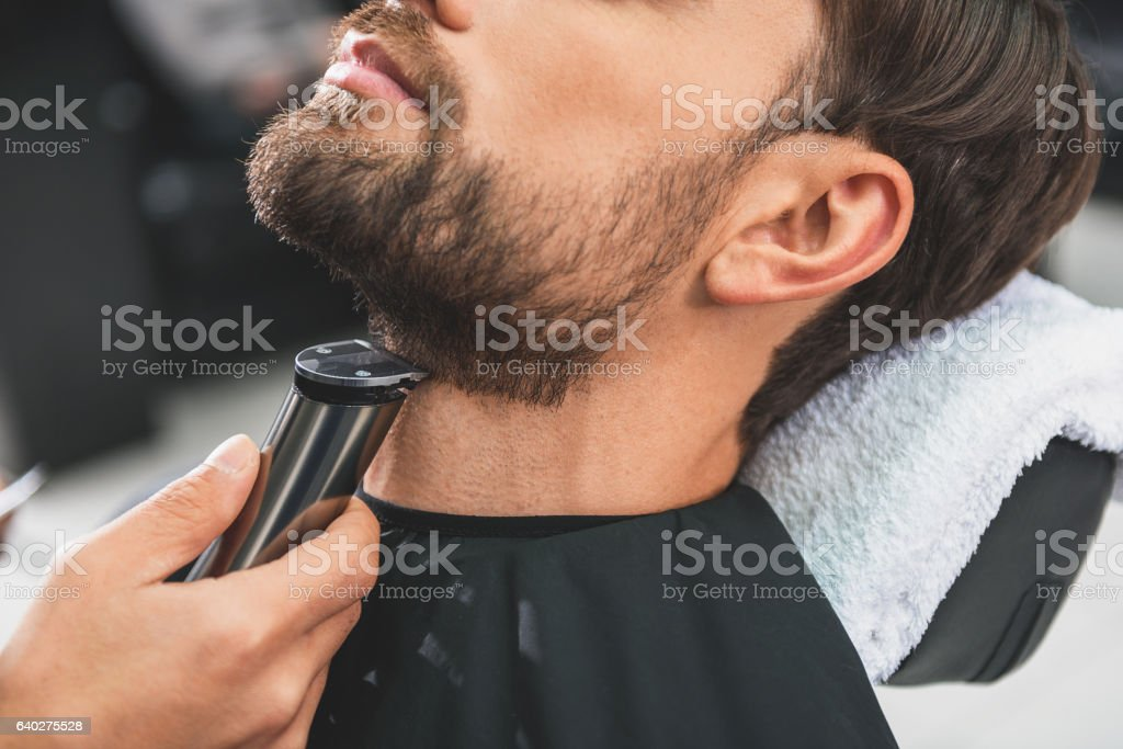 Barber leveling human stubble by shearer stock photo