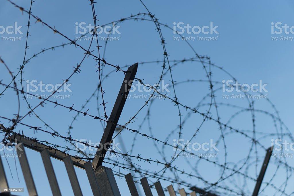 Barbwire, boundary stock photo