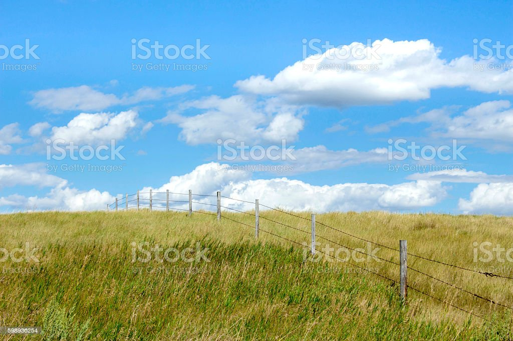 barbwire fence going over the hill out of site. stock photo