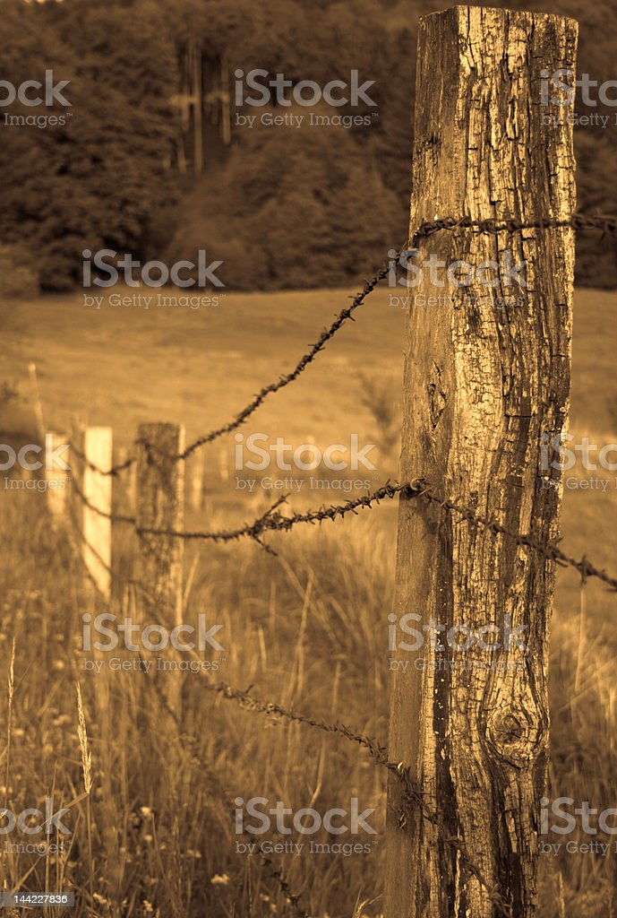 barbwire fence royalty-free stock photo