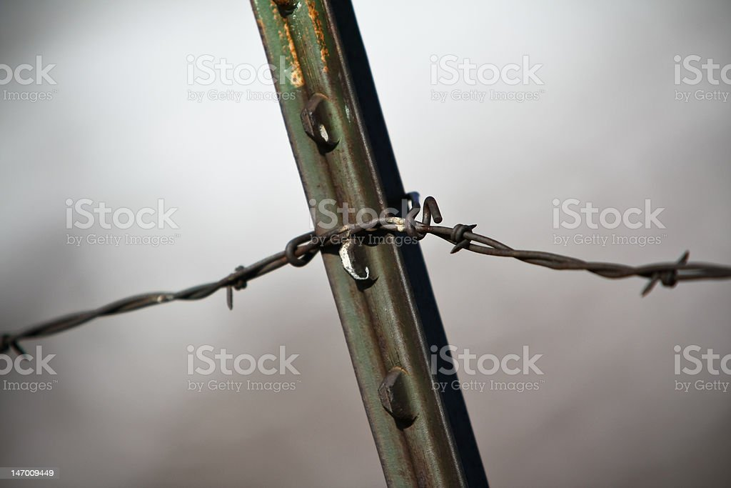 Barbwire Fence stock photo