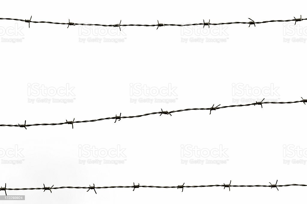 barbwire II stock photo
