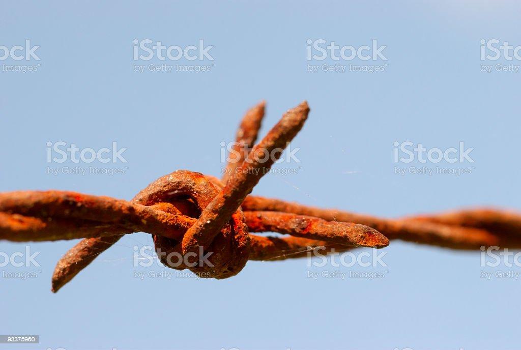 barbwire royalty-free stock photo