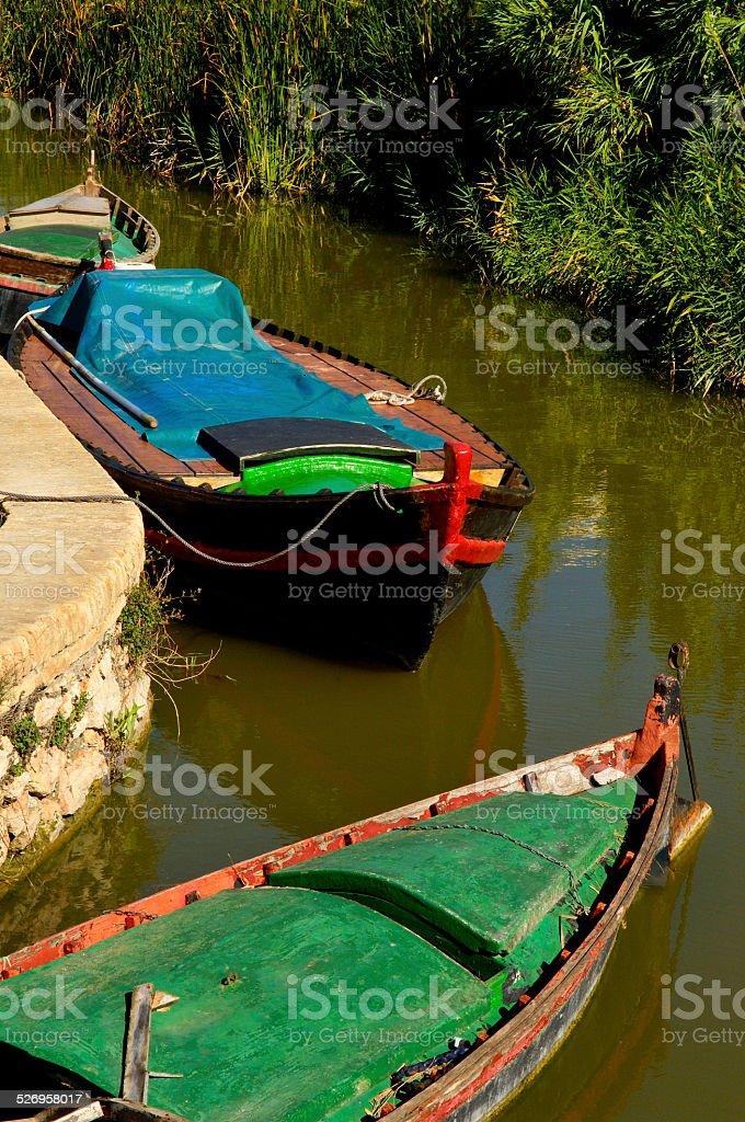 Barcas, El Plamar, la albufera, Valencia, Spain, stock photo