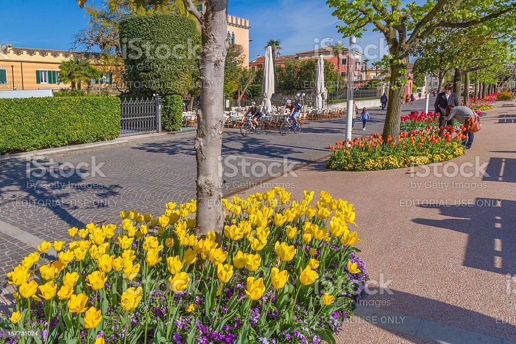 Bardolino Promenade, Italy stock photo