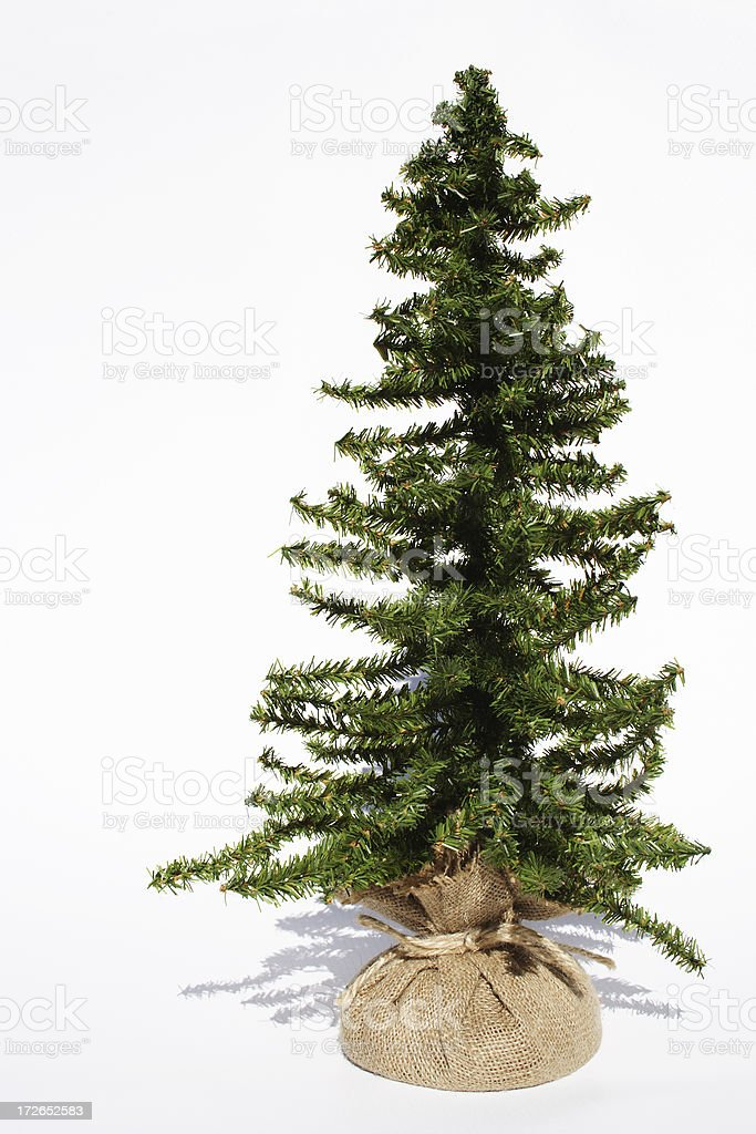 Bare Christmas tree ready to decorate royalty-free stock photo