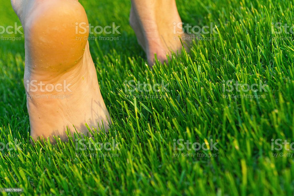 bare feet on a green grass royalty-free stock photo