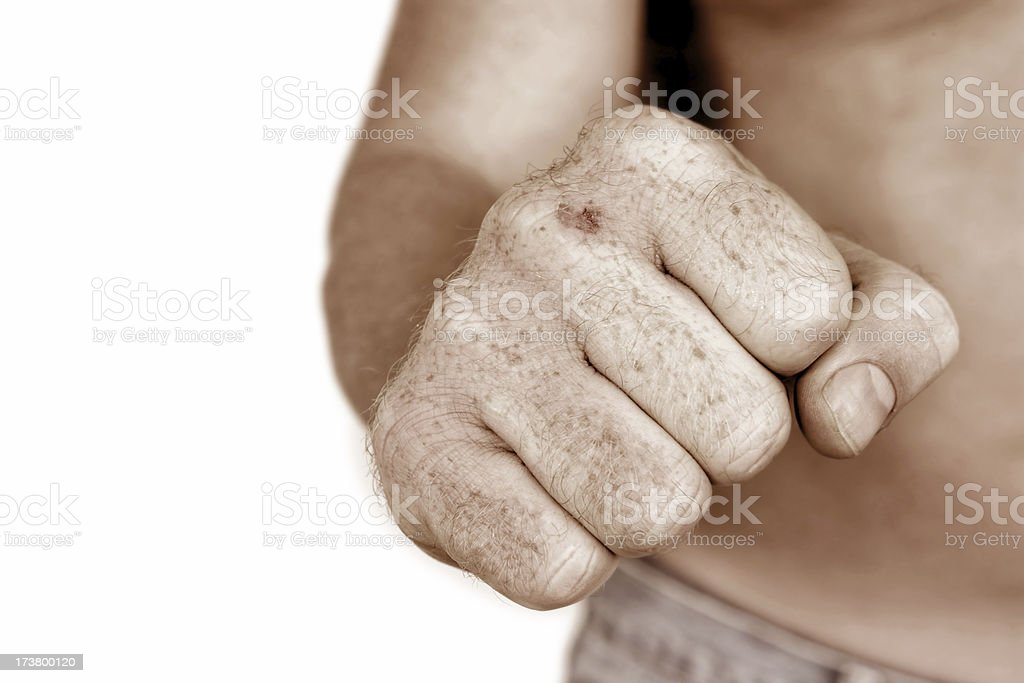 Bare Fist royalty-free stock photo