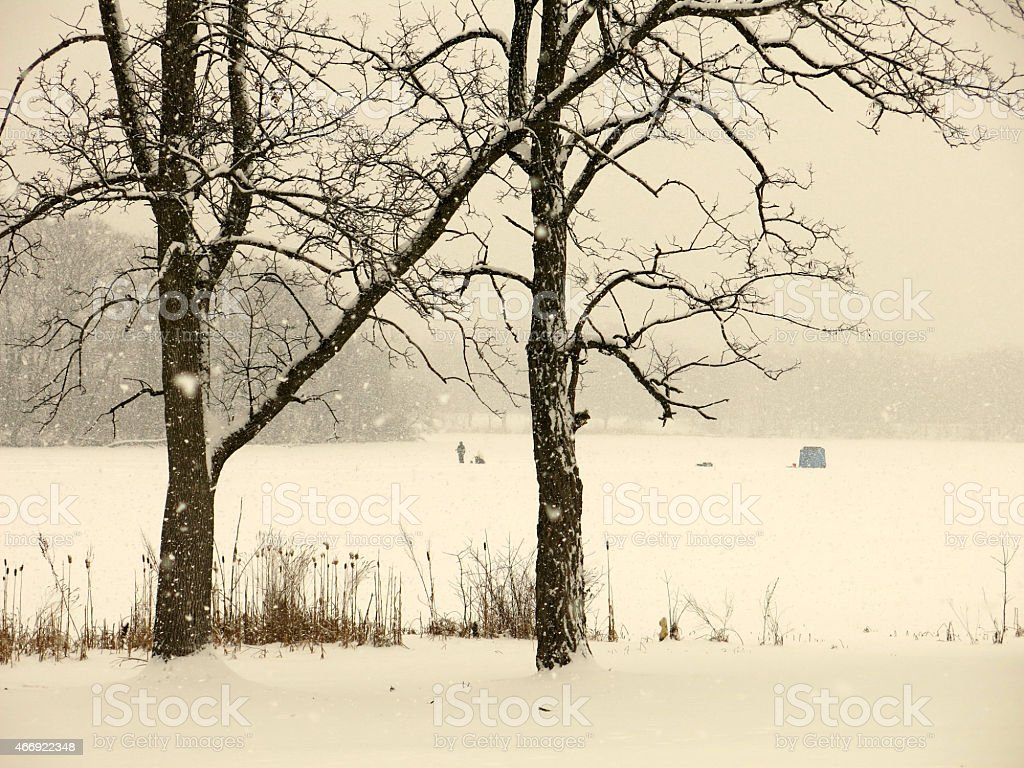 Bare Maple Trees in Snowfall and Ice Fishing on Pond stock photo