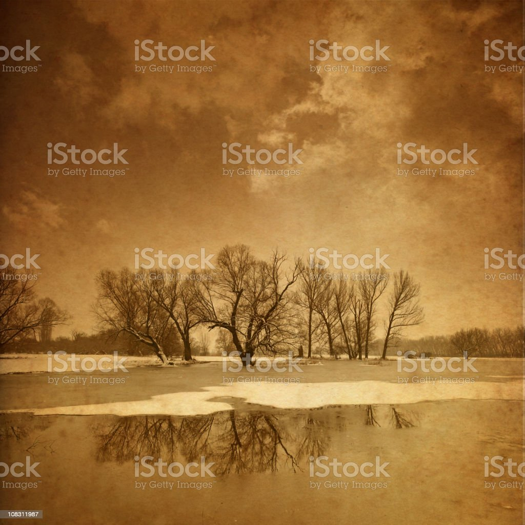 bare trees - old photo royalty-free stock photo