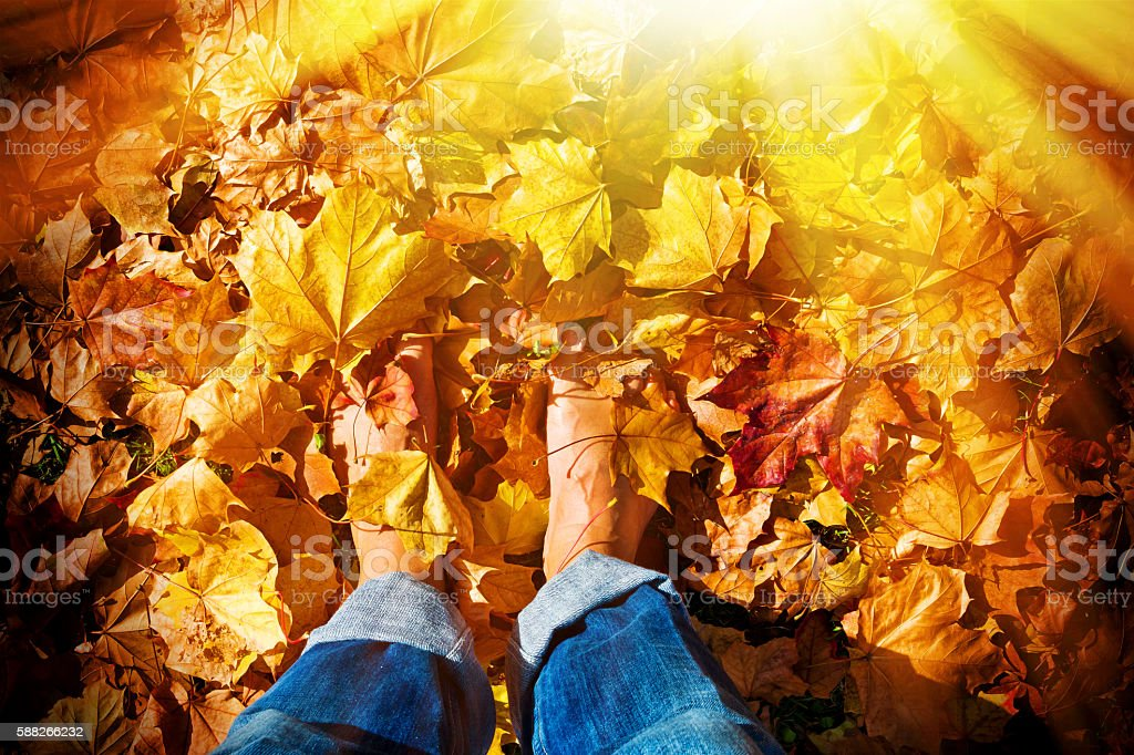 Barefoot in autumn leaves stock photo
