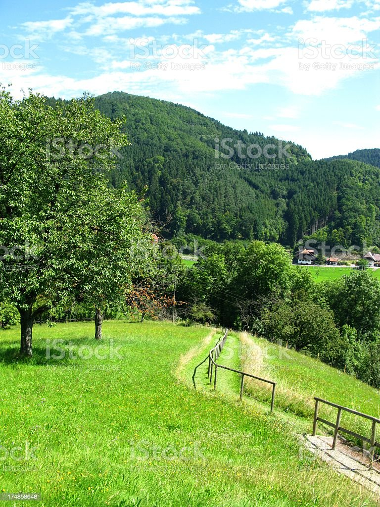 Barefoot trail in the Black Forest royalty-free stock photo