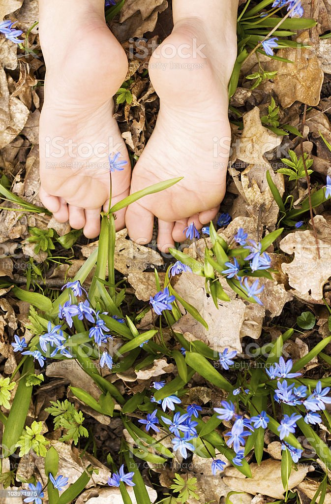 Barefooted tender woman's feet in spring flowers. Copy space royalty-free stock photo