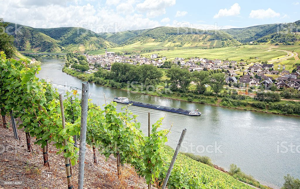 Barge on Mosel River with vineyard stock photo