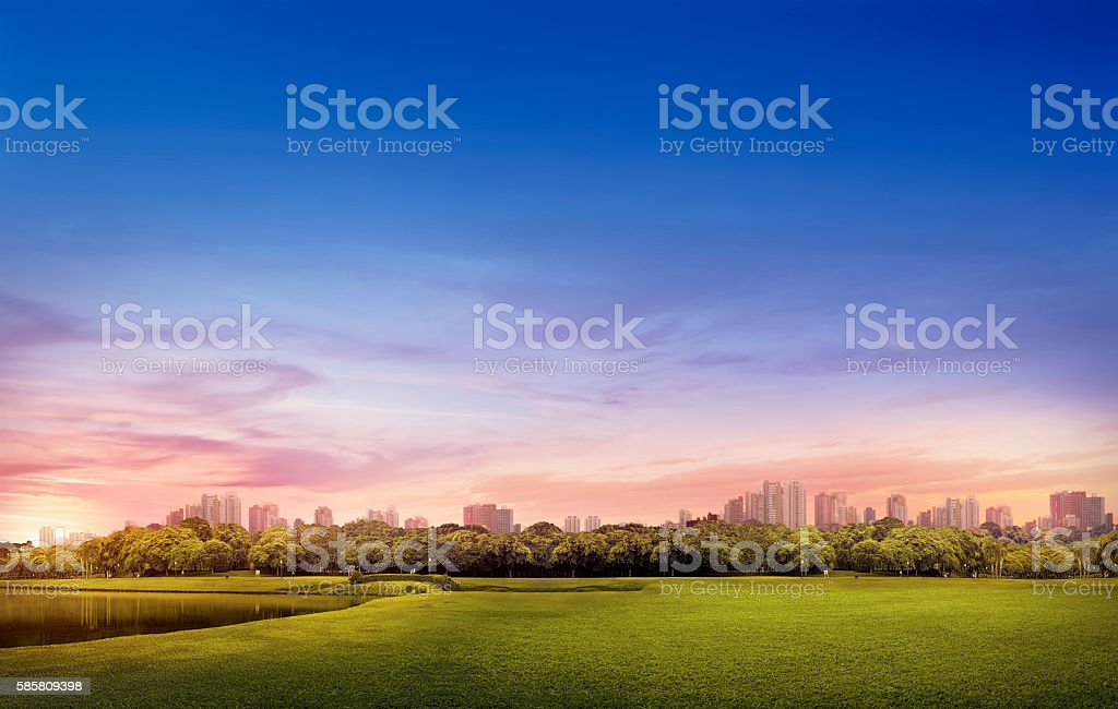 Barigui Park - Curitiba urban landscape stock photo