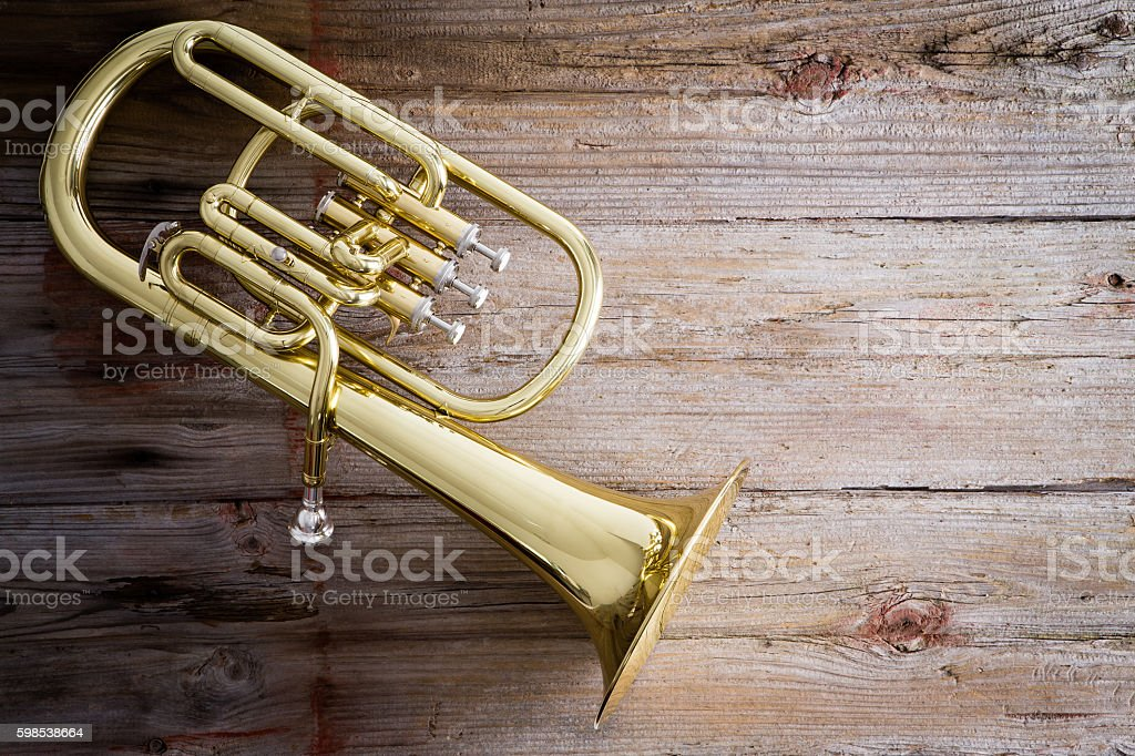 Baritone Horn on a Wooden Floor with Copy Space stock photo