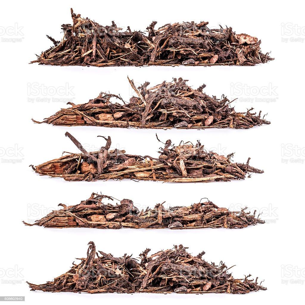 Bark mulch stock photo