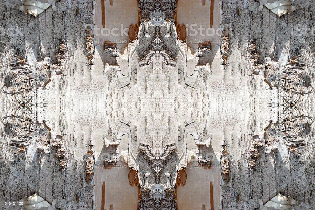 Bark of birch tree texture background surreal shaped symmetrical kaleidoscope stock photo