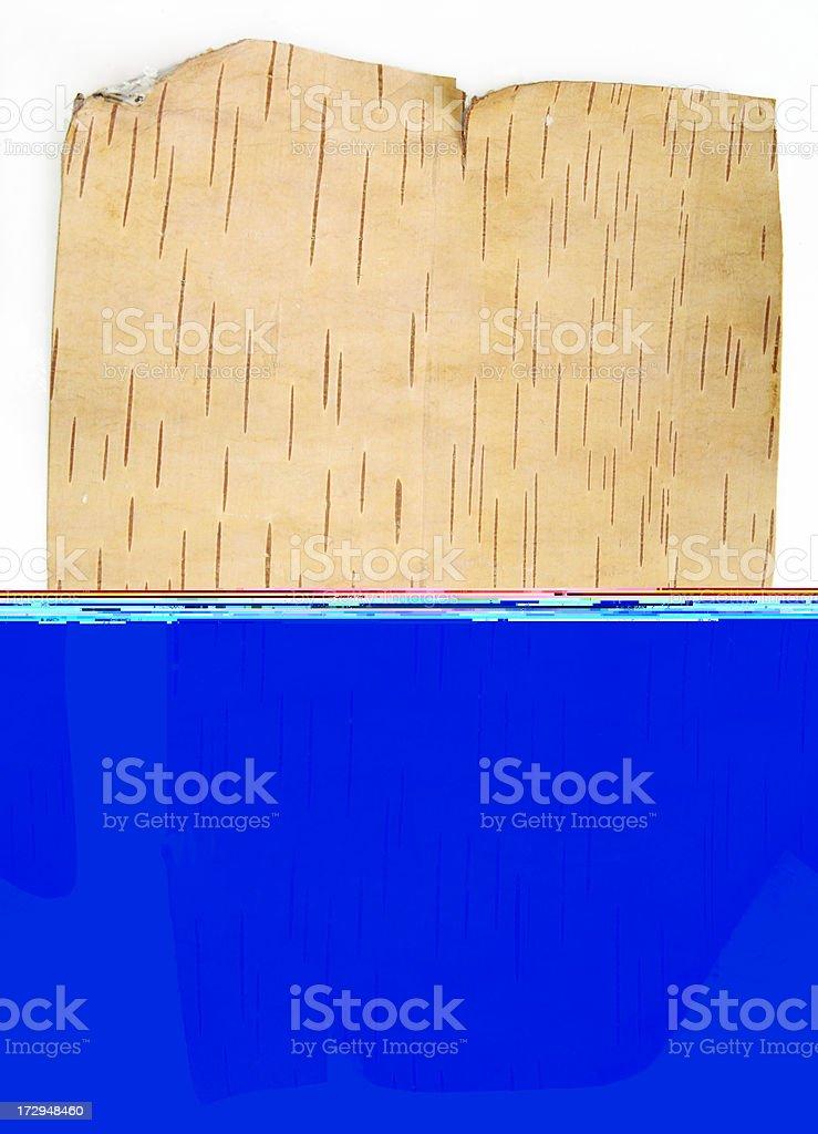 Bark of the birch royalty-free stock photo