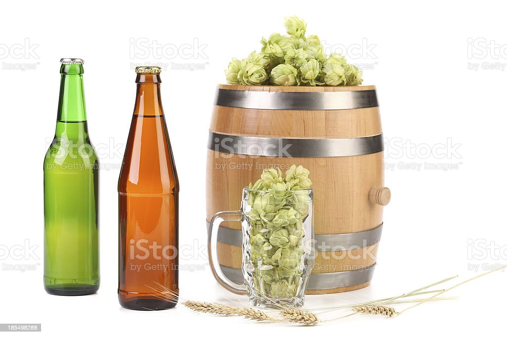Barley and hop composition. royalty-free stock photo