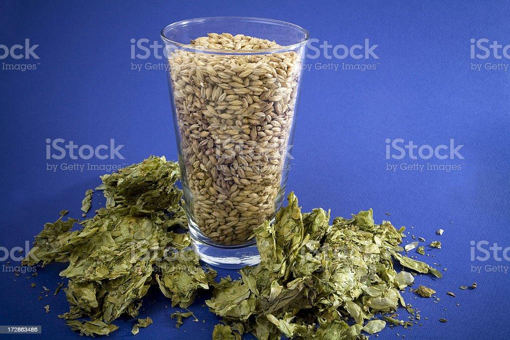 Barley and Hops ready to make beer. stock photo