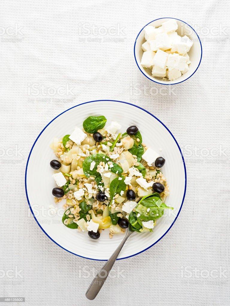 barley chicory salad stock photo