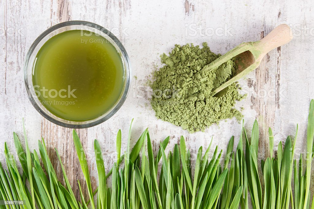 Barley grass with beverage and young powder barley, body detox stock photo