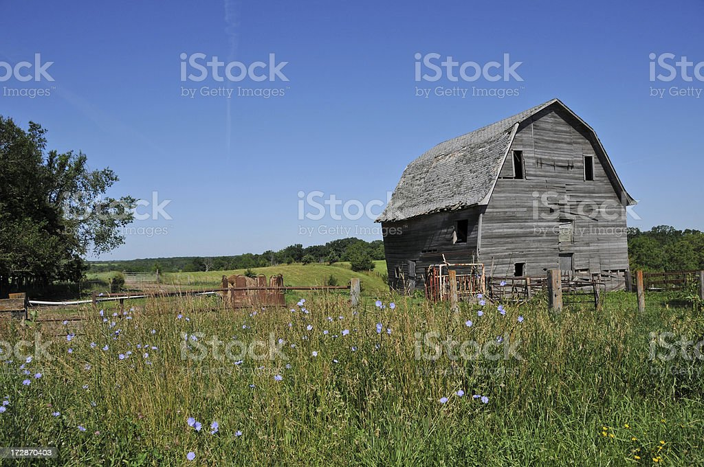 Barn and Field royalty-free stock photo