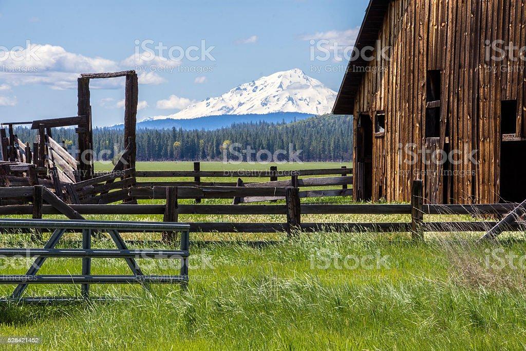 Barn and Shasta stock photo