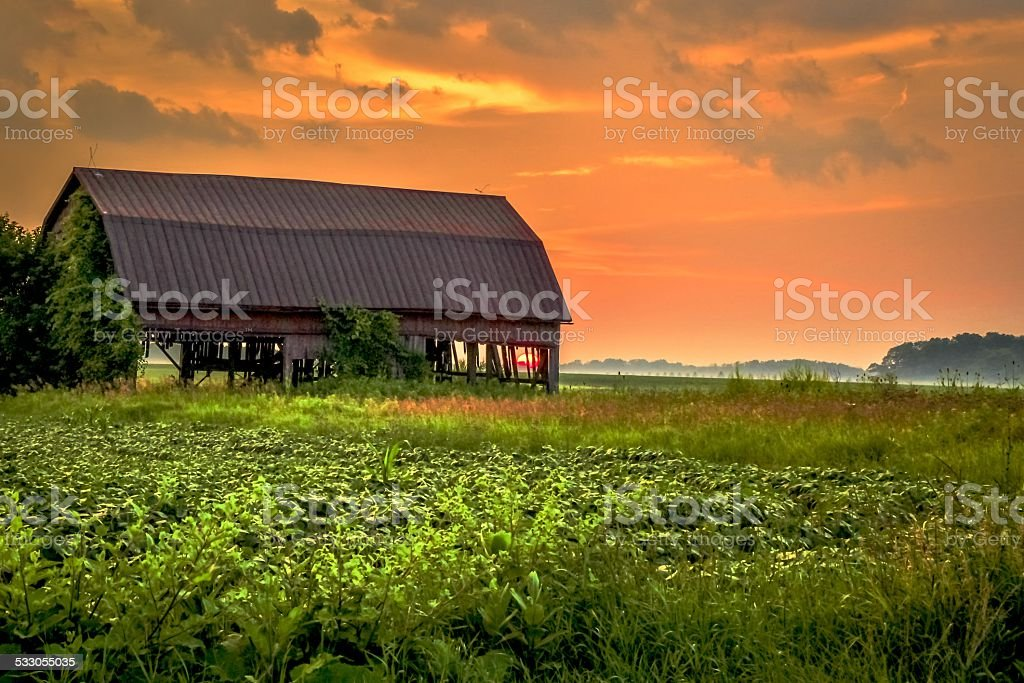 Barn At Sunset In Americas Midwestern Farmland stock photo